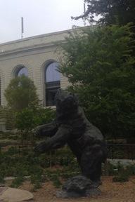 Stadium Bear