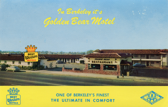 Golden Bear without Shutteres