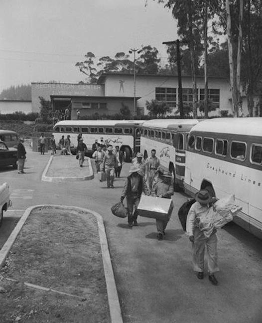 1956 Deportation Operation Wetback