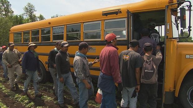 Farm labor Bus 1