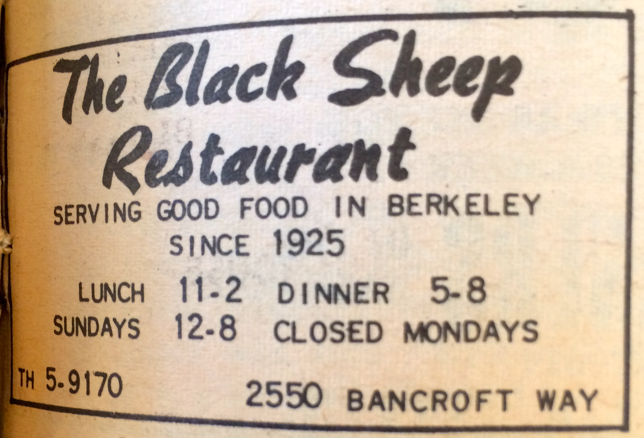 Black Sheep Ad 3