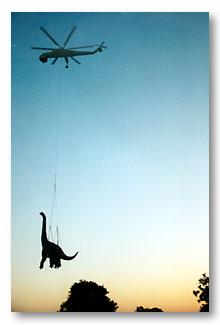Dixie flying 2
