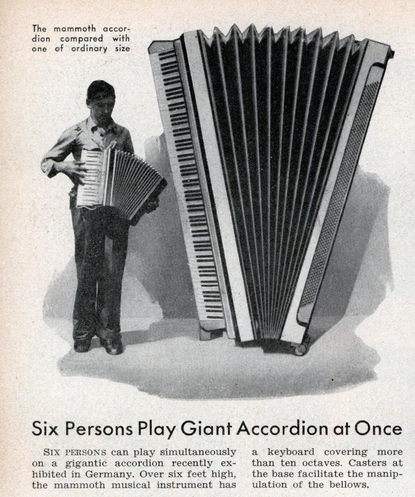 giant_accordian