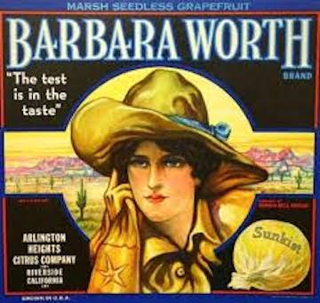 Barbara Worth Label 2