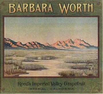 Barbara Worth Label 3