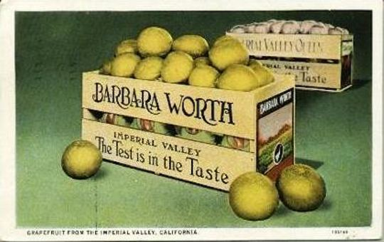 Barbara Worth Label 5