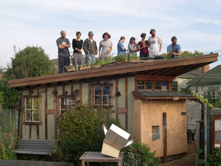 Dig Cooperative members planting the roof