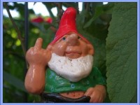 Gnomes Show What They Think Of RHS Ban