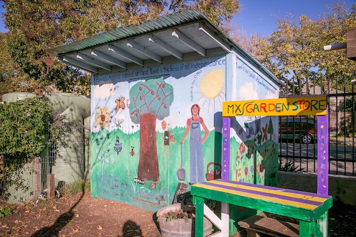 Malcolm X School garden shed