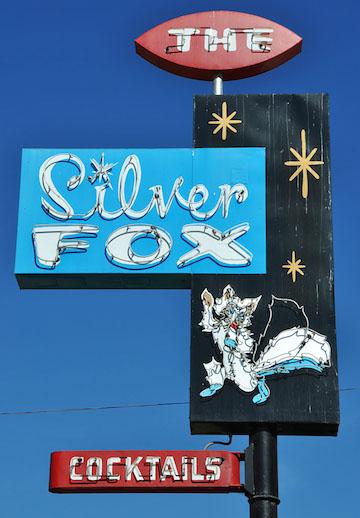silverfox2