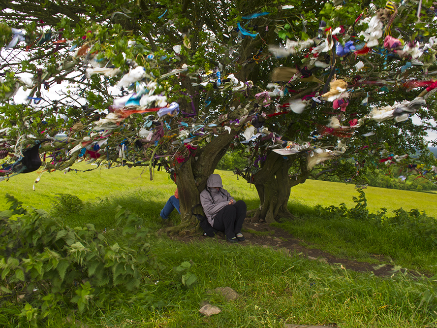 Irish wishing tree.  Photo: http://2013spiritofirleandtour.blogspot.com/2013/07/fairy-tree-at-hill-of-tara.html