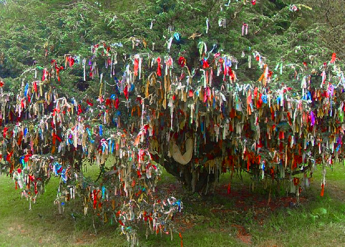 Photo: http://www.terriwindling.com/blog/2015/06/the-blessings-of-the-trees.html