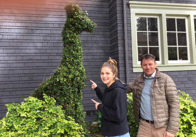 Giraffe topiary, Berryman