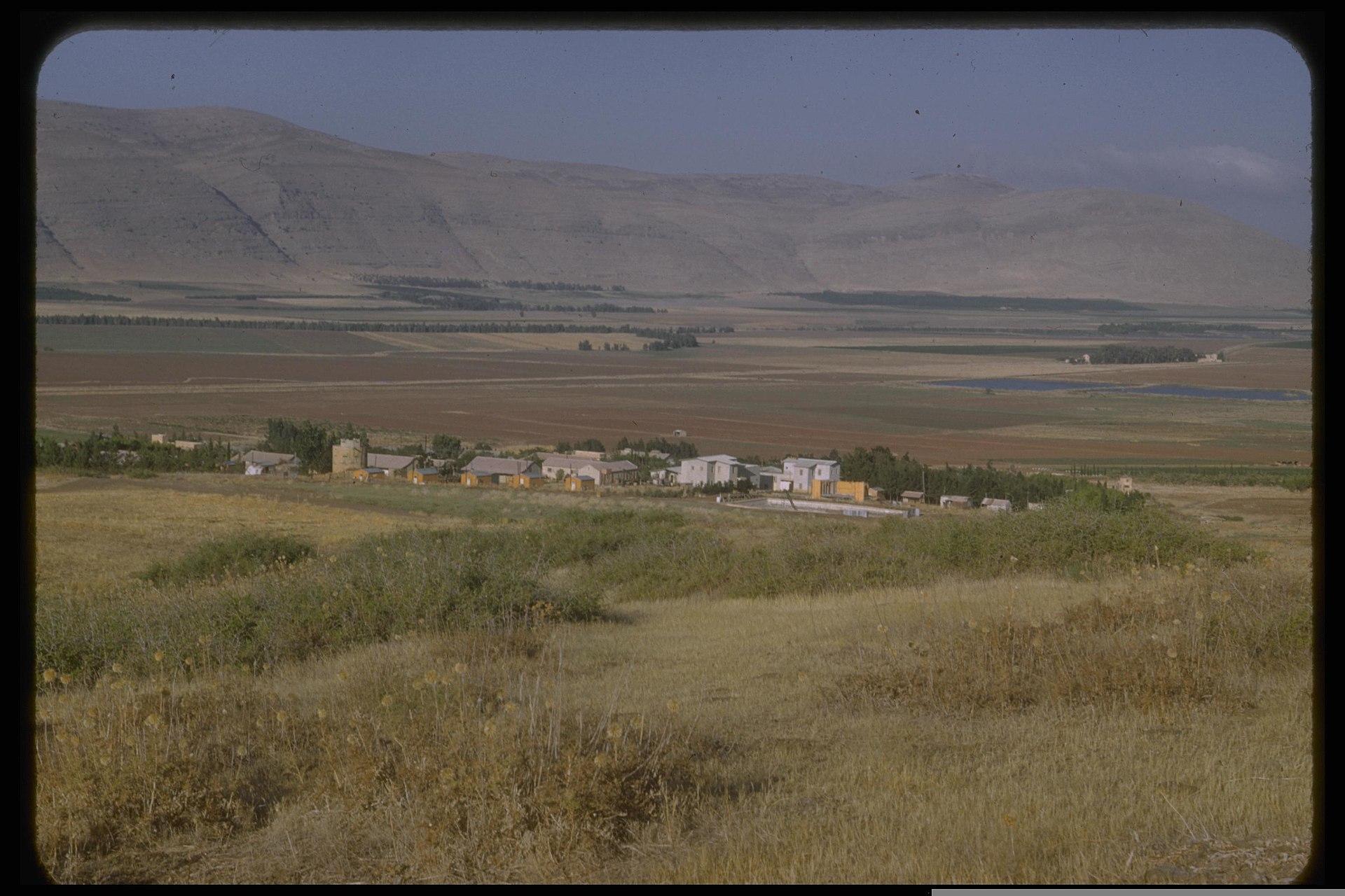 1920px-Kibbutz_Beit_Hashita1950-1