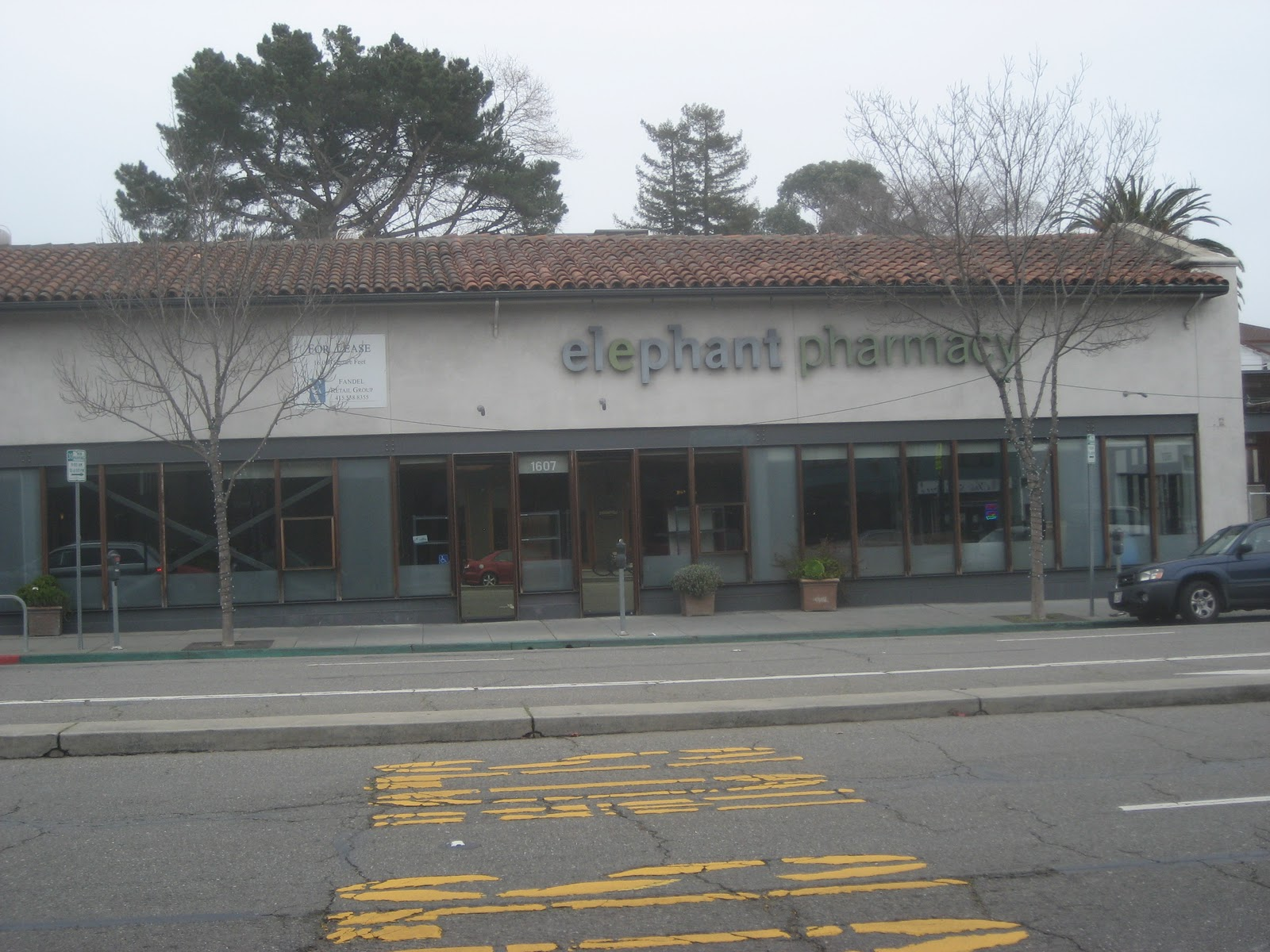 elephantpharmacy