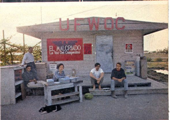 ElMalcriado